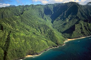 Coffee Farm Lodging Big Island Hawaii